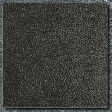 shadow-leather-swatch